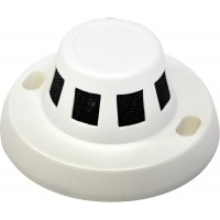 Camera Dome Smoke Detector Color 1/3